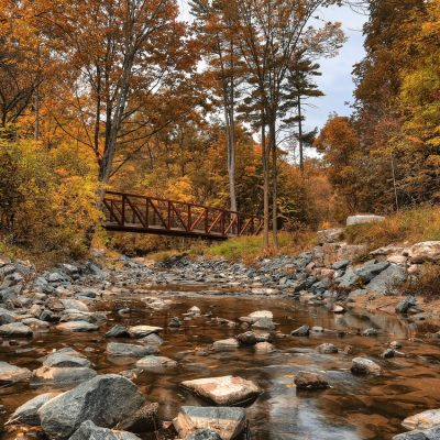5 Best North York Photography Locations