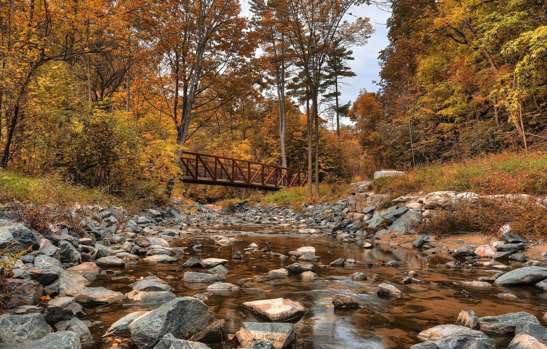 Wilket Creek ParkVanue for Shoot